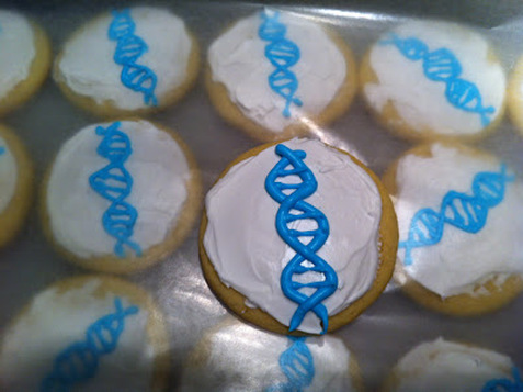 science cookies dna cookies