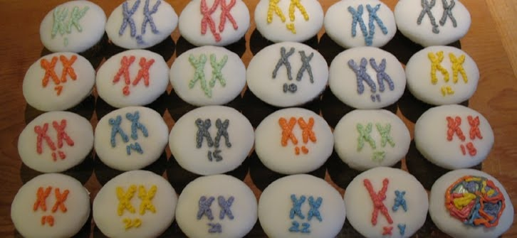 women in science cupcakes, scientista cupcakes